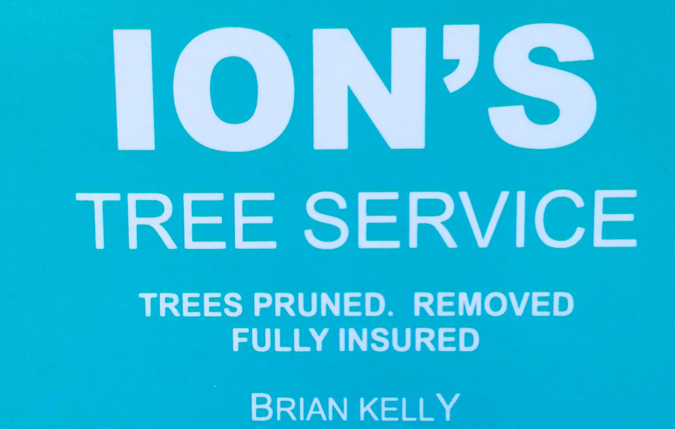 Ion's Tree Service Company Logo by Ion's Tree Service in Chidlow WA
