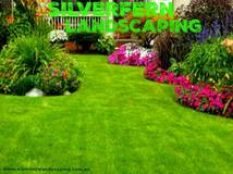 New Grass Turf Lawn Landscaping Designs
