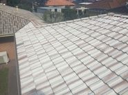 roof restoration and repairs