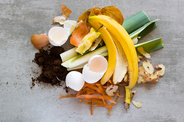 Clever ways to use your food scraps