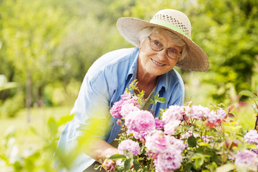 The benefits of gardening for seniors