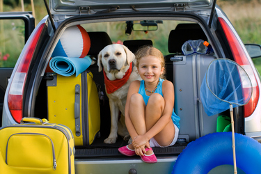 Top tips for camping with pets this long...