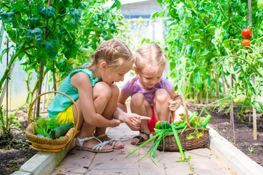 Yates callout for children with green thumbs