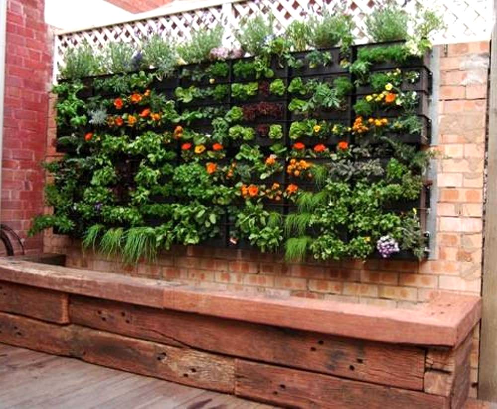 Setting Up A Vegetable Garden Home Decorating Interior Design